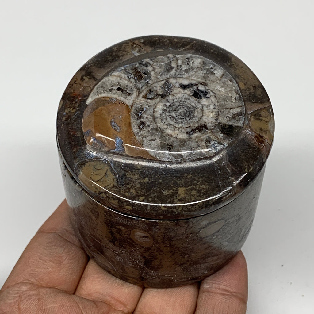 "223.3g, 2.2""x2.4"" Brown Fossils Ammonite Jewelry Box from Morocco, F2466"