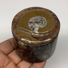 "222.4g, 2.2""x2.4"" Brown Fossils Ammonite Jewelry Box from Morocco, F2478"