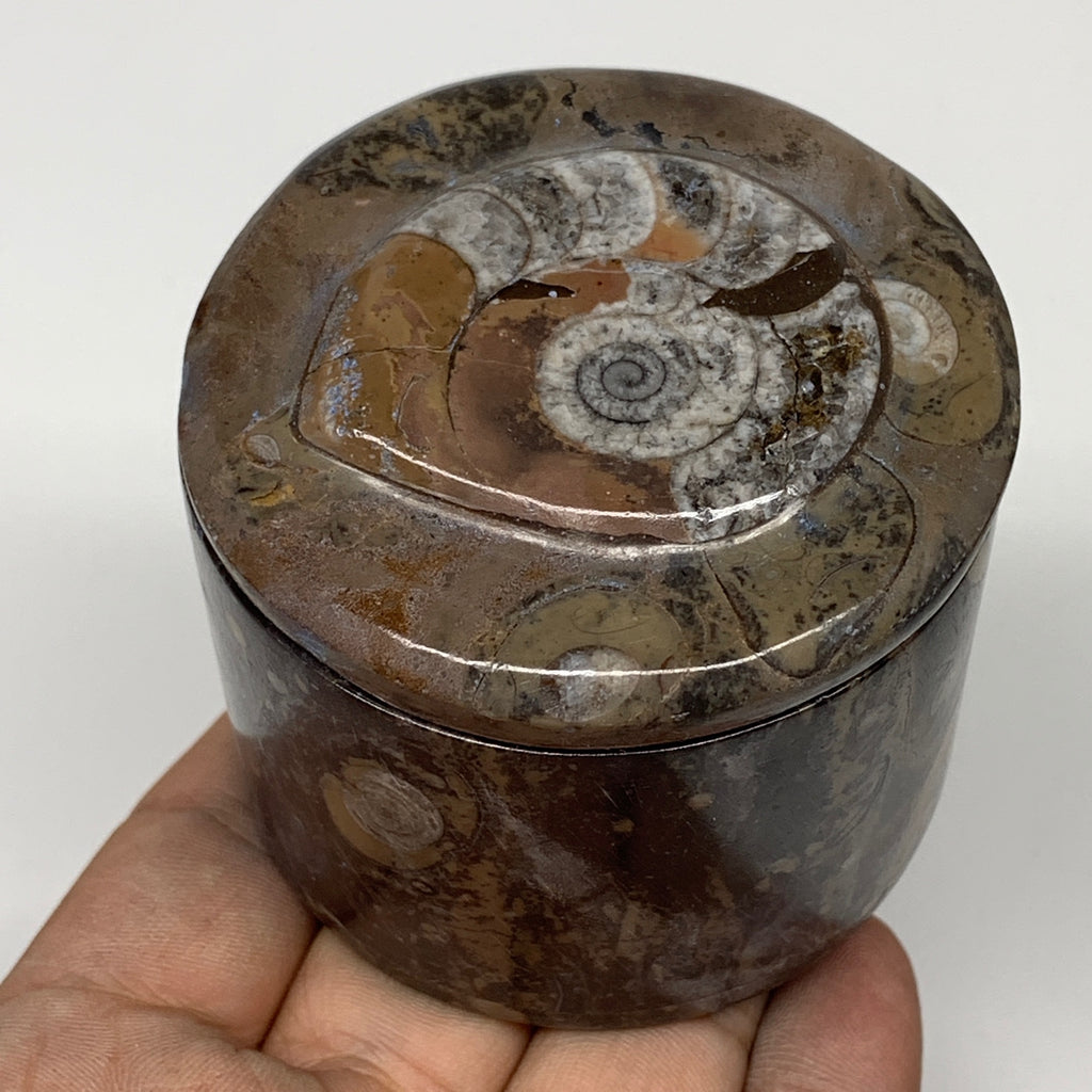 "216.6g, 2.1""x2.4"" Brown Fossils Ammonite Jewelry Box from Morocco, F2490"