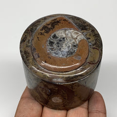 "224.4g, 2.2""x2.4"" Brown Fossils Ammonite Jewelry Box from Morocco, F2498"