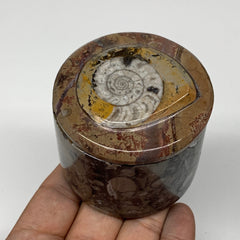 "224.9g, 2.2""x2.4"" Brown Fossils Ammonite Jewelry Box from Morocco, F2499"