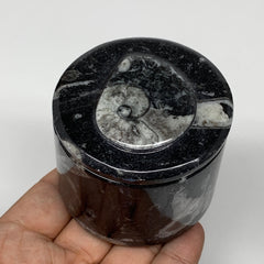 "214.5g, 2.1""x2.4"" Black Fossils Ammonite Orthoceras Jewelry Box @Morocco,F2509"