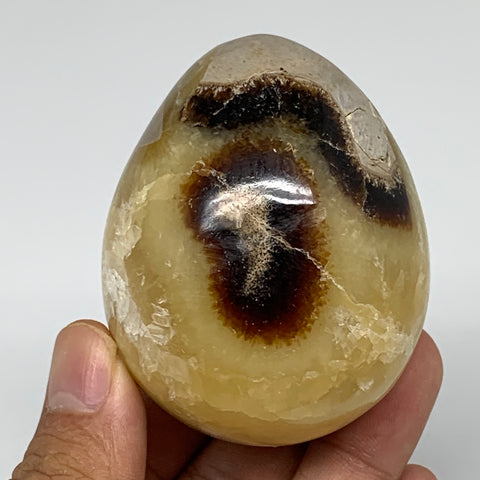"235.1g, 2.5""x2"" Natural Polished Septarian Egg, gemstones @Madagascar,B5217"
