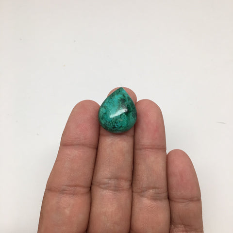 20 cts Natural TearDrop Shape Chrysocolla Cabochon From Mexico, CC05 - watangem.com