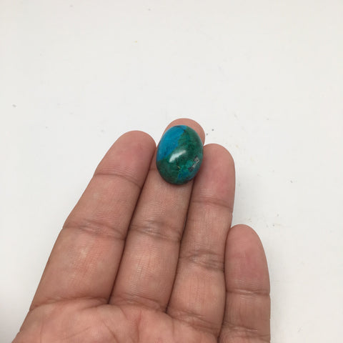 27 cts Natural Oval Shape Flat Bottom Chrysocolla Cabochon From Mexico, CC39 - watangem.com