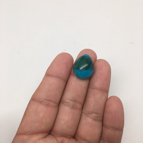 17 cts Natural Teardrop Shape Flat Bottom Chrysocolla Cabochon From Mexico, CC53 - watangem.com