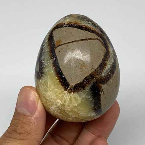 "179.1g, 2.4""x1.8"" Natural Polished Septarian Egg, gemstones @Madagascar,B5244"