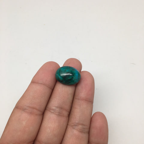 19 cts Natural Oval Shape Flat Bottom Chrysocolla Cabochon From Mexico, CC74 - watangem.com