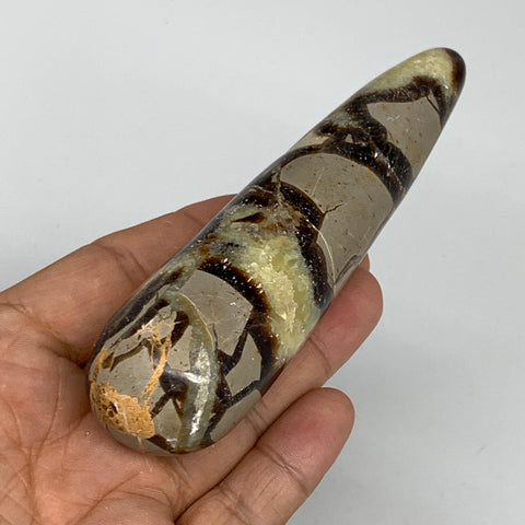 "167.4g,4.8""x1.2"" Natural Septarian Wand Stick, Home Decor, Collectible, B6088"
