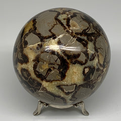 "1698g,4.1"" Natural Septarian Sphere Crystal Gemstone Ball @Madagascar, B5283"