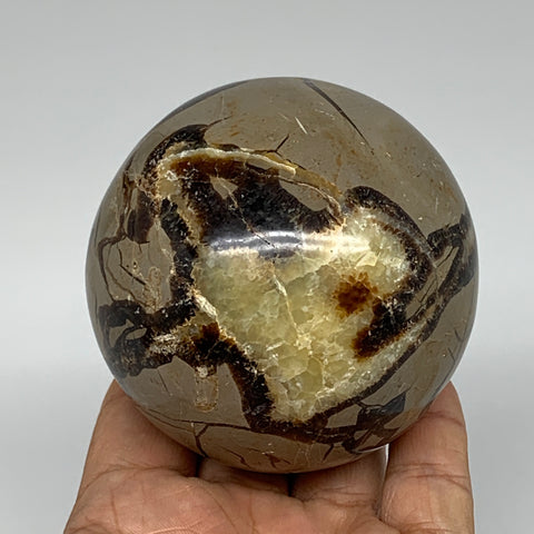 "550g,2.9"" Natural Septarian Sphere Crystal Gemstone Ball @Madagascar, B5284"