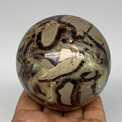 "606g,3"" Natural Septarian Sphere Crystal Gemstone Ball @Madagascar, B5287"