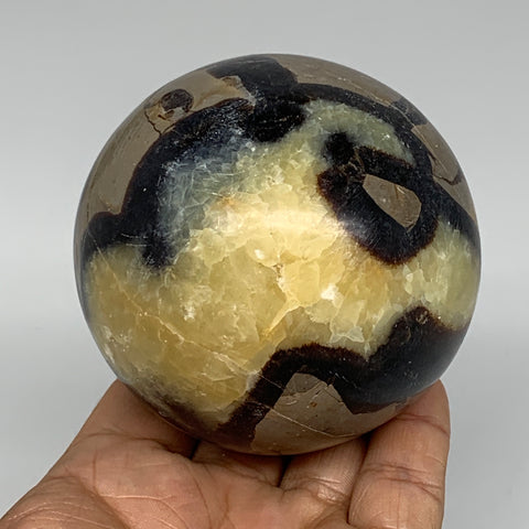 "588g,3"" Natural Septarian Sphere Crystal Gemstone Ball @Madagascar, B5294"