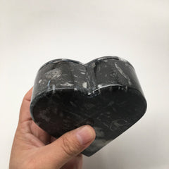 396 Grams Heart Fossils Orthoceras Handmade Black Jewelry Box @Morocco,MF505