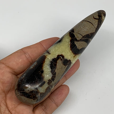 "173.2g,5""x1.2"" Natural Septarian Wand Stick, Home Decor, Collectible, B6134"