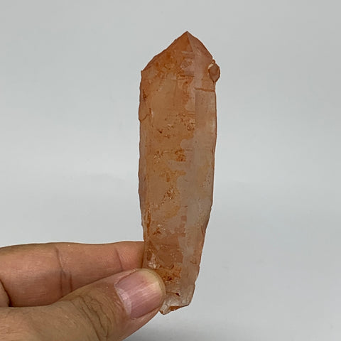 "65.9g, 3.7""x1""x0.8"", Natural Red Quartz Crystal Terminated @Morocco, B11502"