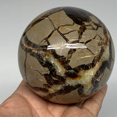 "902g,3.4"" Natural Septarian Sphere Crystal Gemstone Ball @Madagascar, B5323"