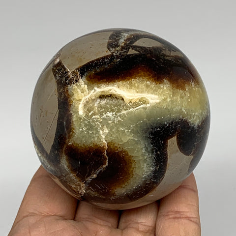 "446.2g,2.7"" Natural Septarian Sphere Crystal Gemstone Ball @Madagascar, B5330"