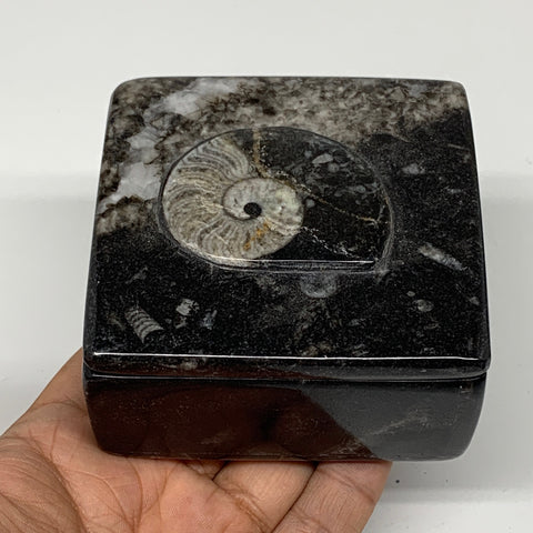 "362g, 3.2""x1.7"", Fossils Ammonite Orthoceras Square Jewelry Box @Morocco,F2619"