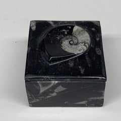 "266.3g, 2.5""x1.9"", Fossils Ammonite Orthoceras Square Jewelry Box @Morocco,F2662"