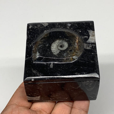 "275.6g, 2.5""x1.8"", Fossils Ammonite Orthoceras Square Jewelry Box @Morocco,F2683"