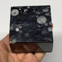 "262.5g, 2.5""x1.9"", Fossils Ammonite Orthoceras Square Jewelry Box @Morocco,F2704"