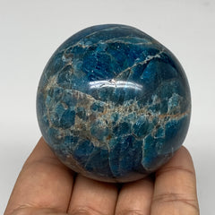 "316.9g, 2.3"" (58mm) Blue Apatite Sphere Ball Gemstone Healing Reiki, B6279"