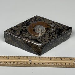 "542g, 6.5""x3.7""x2.1"", Brown Fossils Ammonite Jewelry Box Marquise @Morocco, F276"