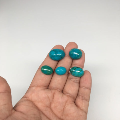 55 cts, 5pcs, Natural Oval Shape Flat Bottom Chrysocolla Cabochon @Mexico,Lot17 - watangem.com