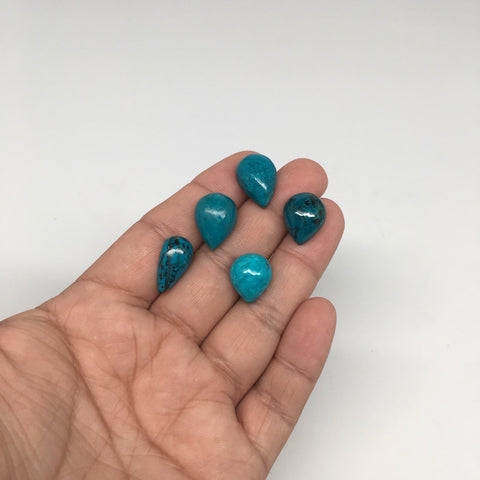 42.5 cts, 5pcs, Natural Teardrop Flat Bottom Chrysocolla Cabochons @Mexico,Lot25 - watangem.com
