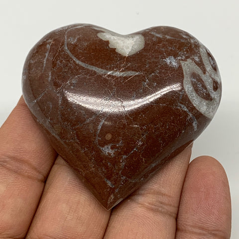 "62.8g,2""x2.2""x0.7"" Natural Untreated Red Shell Fossils Half Heart @Morocco,F962"