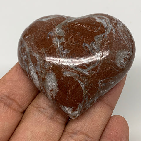 "62.9g,2""x2.1""x0.7"" Natural Untreated Red Shell Fossils Half Heart @Morocco,F963"