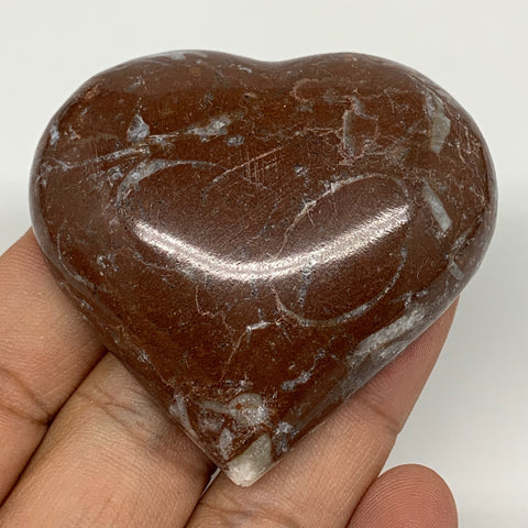 "63.8g, 2"" x 2.2""x 0.6"", Natural Untreated Red Shell Fossils Half Heart @Morocco,"