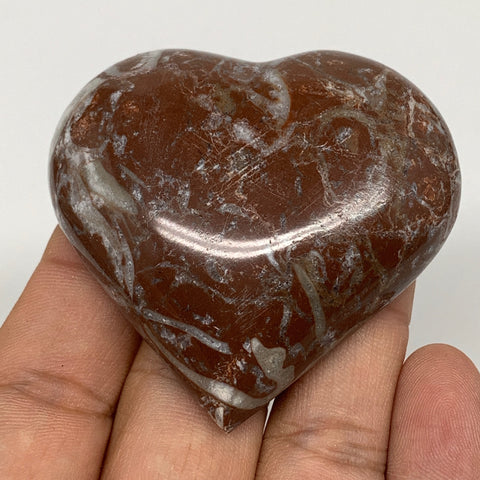 "63.3g, 2.1"" x 2.2""x 0.6"", Natural Untreated Red Shell Fossils Half Heart @Morocc"