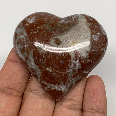 "62g, 2"" x 2.2""x 0.6"", Natural Untreated Red Shell Fossils Half Heart @Morocco,F1"