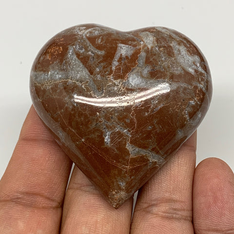 "64.9g, 2.1"" x 2.1""x 0.7"", Natural Untreated Red Shell Fossils Half Heart @Morocc"