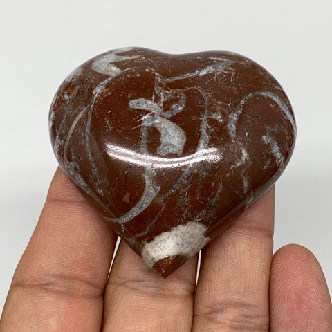 "63.2g, 2.1"" x 2.1""x 0.7"", Natural Untreated Red Shell Fossils Half Heart @Morocc"