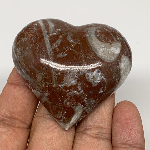 "61.3g, 2"" x 2.2""x 0.7"", Natural Untreated Red Shell Fossils Half Heart @Morocco,"