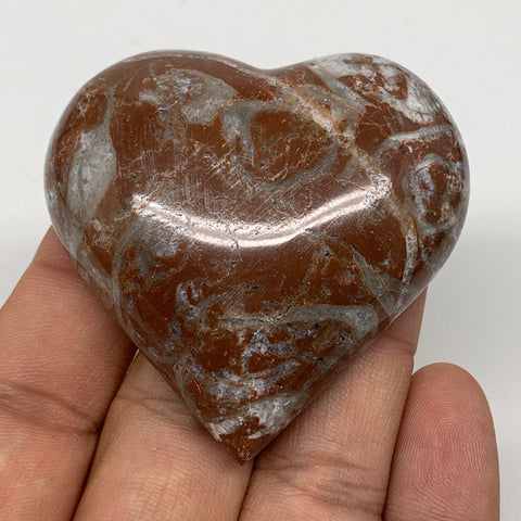 "60.9g, 2"" x 2.1""x 0.7"", Natural Untreated Red Shell Fossils Half Heart @Morocco,"
