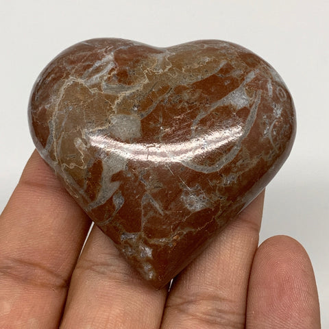 "61.8g, 2"" x 2.1""x 0.6"", Natural Untreated Red Shell Fossils Half Heart @Morocco,"