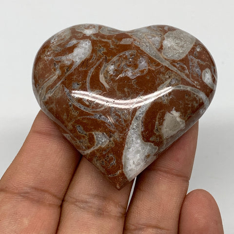 "60.4g, 2"" x 2.2""x 0.6"", Natural Untreated Red Shell Fossils Half Heart @Morocco,"