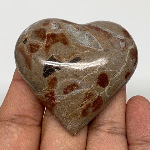 "61.3g, 2.1"" x 2.1""x 0.7"", Natural Untreated Red Shell Fossils Half Heart @Morocc"