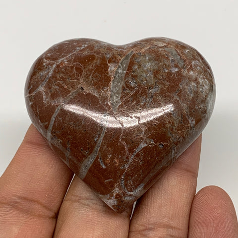 "61.2g, 2"" x 2.1""x 0.7"", Natural Untreated Red Shell Fossils Half Heart @Morocco,"