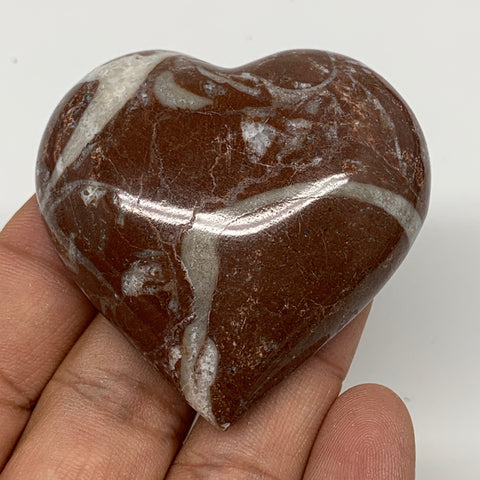 "60.2g, 2"" x 2.1""x 0.7"", Natural Untreated Red Shell Fossils Half Heart @Morocco,"