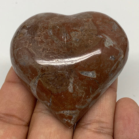 "67.3g, 2.1"" x 2.1""x 0.7"", Natural Untreated Red Shell Fossils Half Heart @Morocc"
