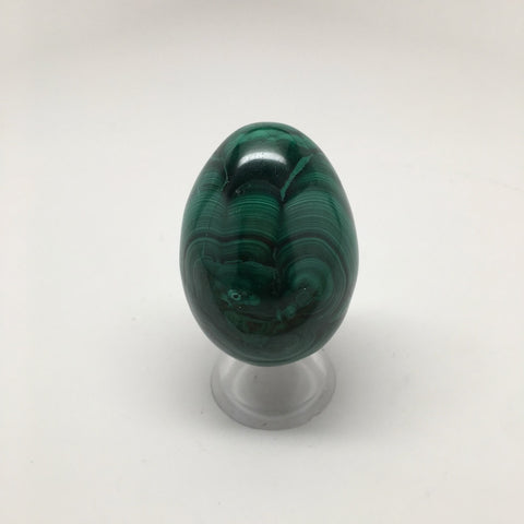 181.2 Grams Shiny Glassy Polished Green Natural Malachite Egg from Congo,D801 - watangem.com