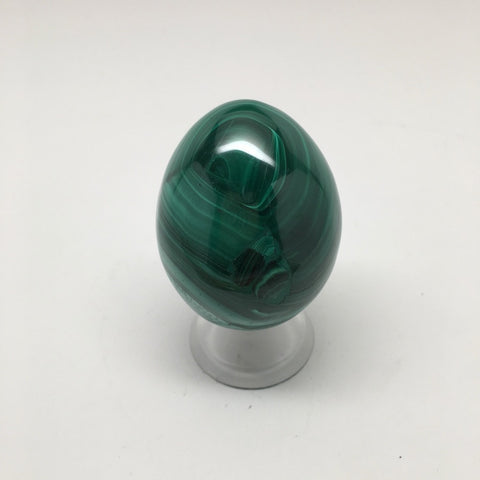 163.8 Grams Shiny Glassy Polished Green Natural Malachite Egg from Congo,D807