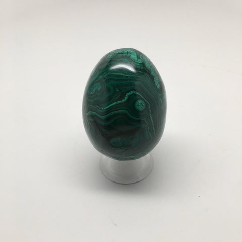 211.6 Grams Shiny Glassy Polished Green Natural Malachite Egg from Congo,D808