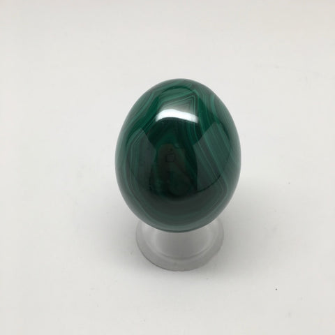 146.2 Grams Shiny Glassy Polished Green Natural Malachite Egg from Congo,D815
