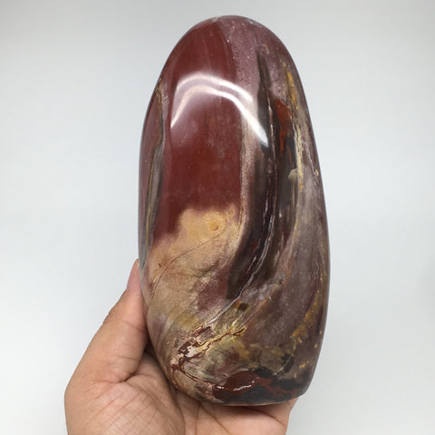 "898g, 5.9""x2.9""x2.1"" Natural Petrified Wood Freeform Polished Gemstones, B930"